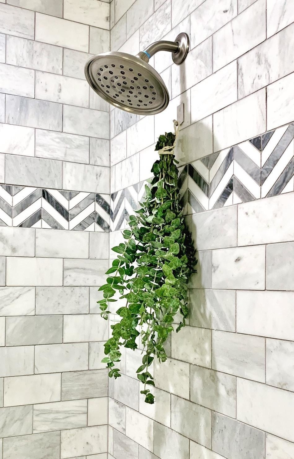 The eucalyptus bunch hanging in a shower