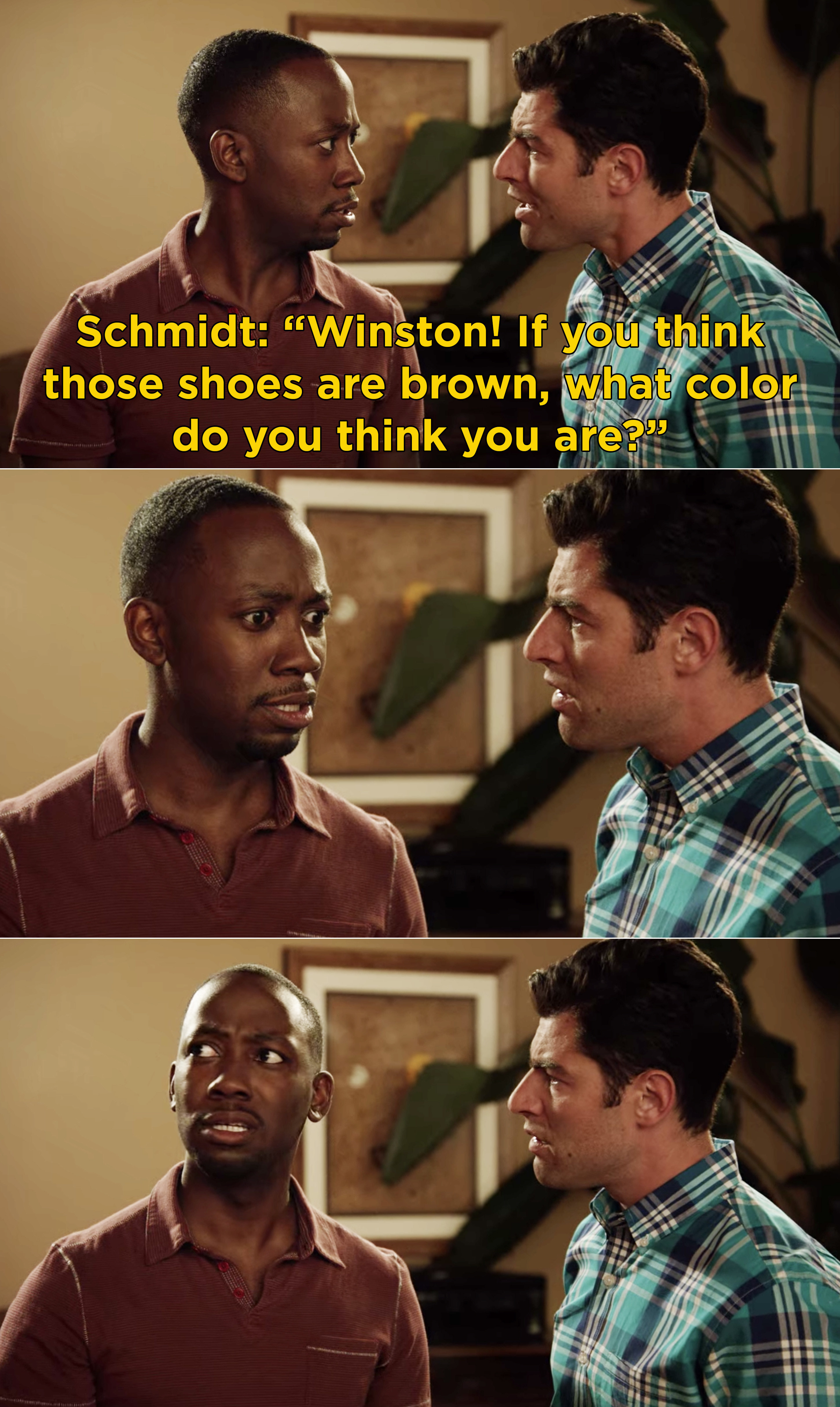 "Schmidt asking Winston, ""If you think those shoes are brown, what color do you think you are?"" and Winston looking stunned and confused"