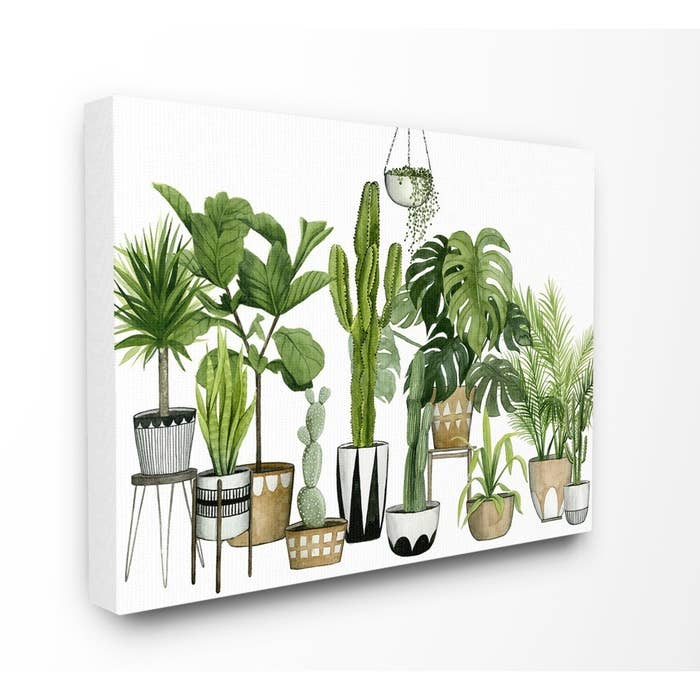 A canvas drawing with houseplants
