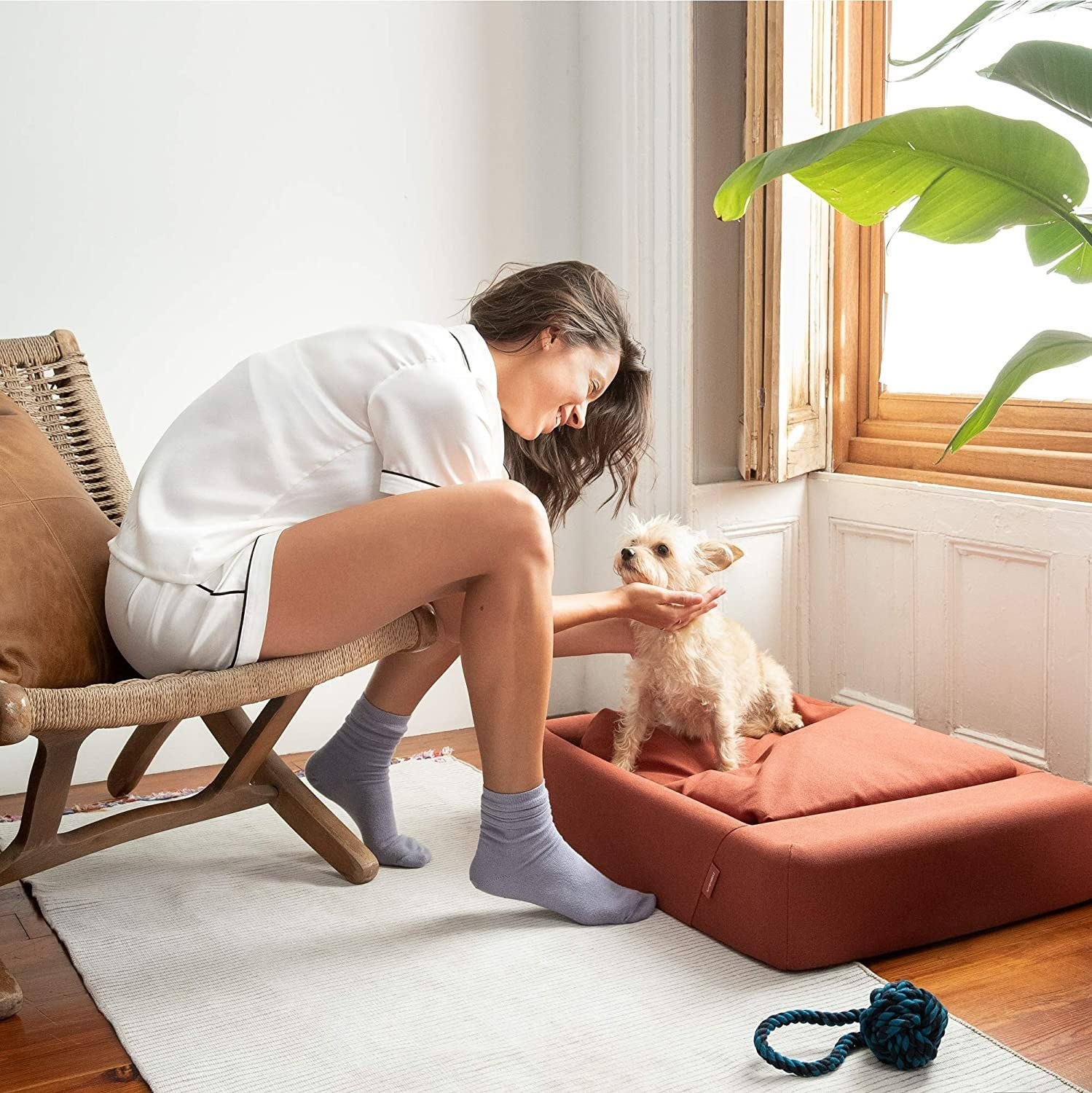 a pet owner petting their dog who is sitting in a rust colored, memory foam bed