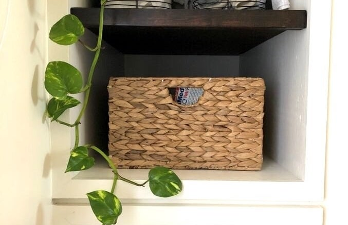 wicker baskets on a shelf with a vine hanging down