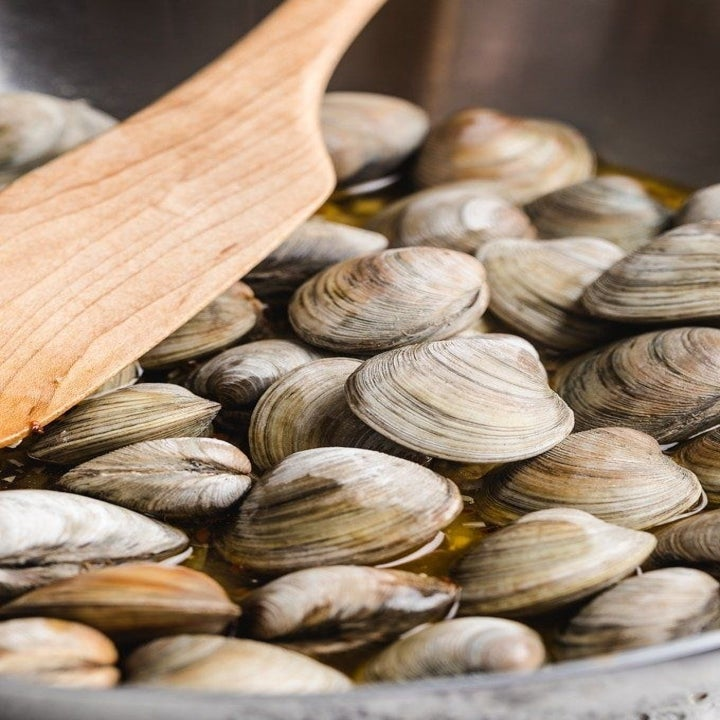 Steaming clams in a pot.