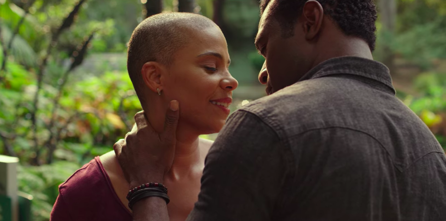 """Sanna Lathan and Lyiq Bent in """"Nappily Ever After"""""""