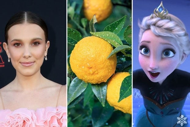 """Millie Bobby Brown, lemons growing on a tree, and Elsa from """"Frozen"""""""