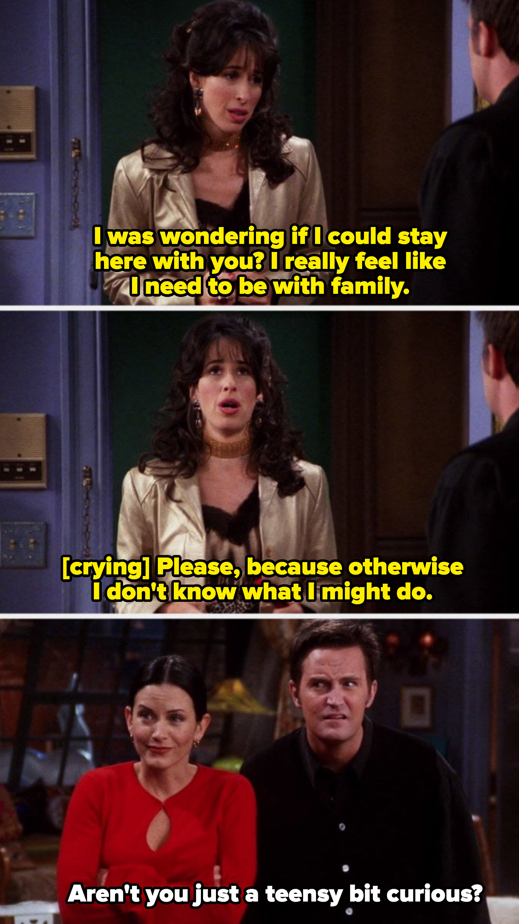 "Janice begging Monica and Chandler: ""Please, because otherwise I don't know what I might do"" and Chandler responding with: ""Aren't you just a teensy bit curious?"""