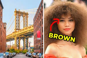 """On the left, the Brooklyn Bridge on a sunny day, and on the right, Zendaya with an arrow pointing to her eye and """"brown"""" typed next to it"""