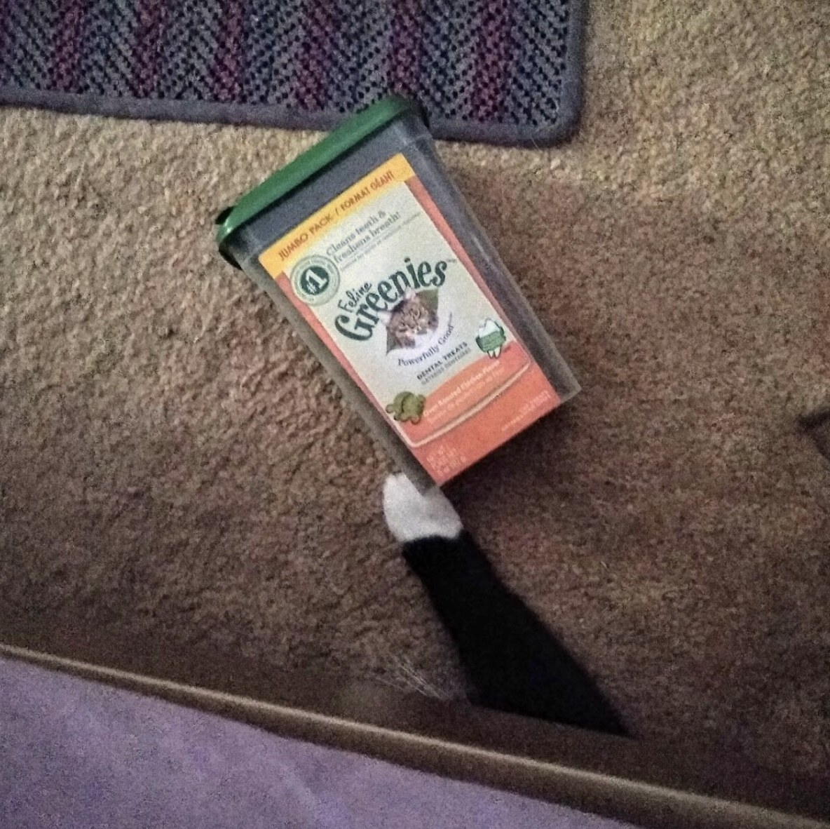 a cat's paw grabbing the box of greenies treats