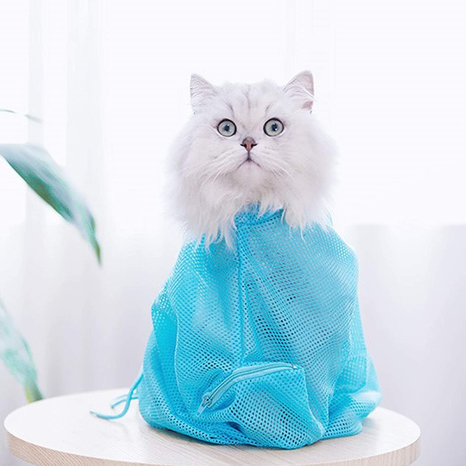 a long hair cat inside of a turquoise mesh shower bag