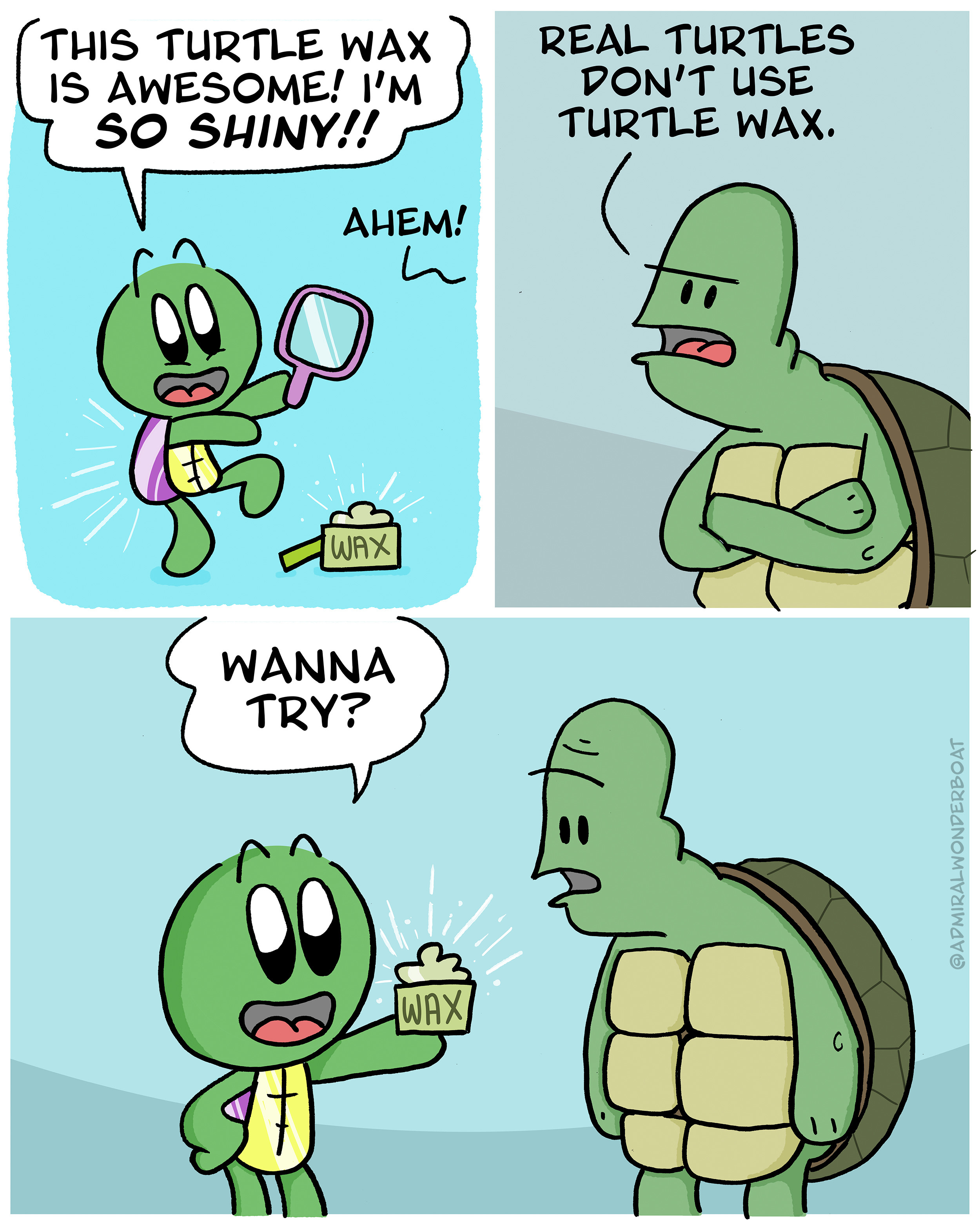 a cartoon turtle uses wax to make their shell nice and shiny, but they get judged for it by an older turtle who thinks real turtles don't do that sort of thing
