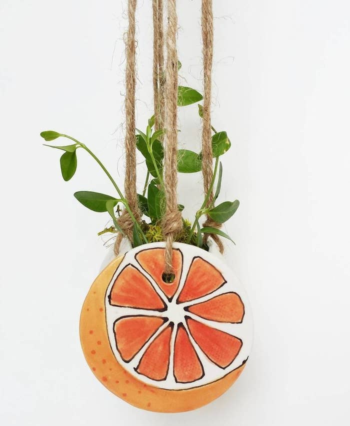 A grapefruit-shaped planter suspended by rustic rope