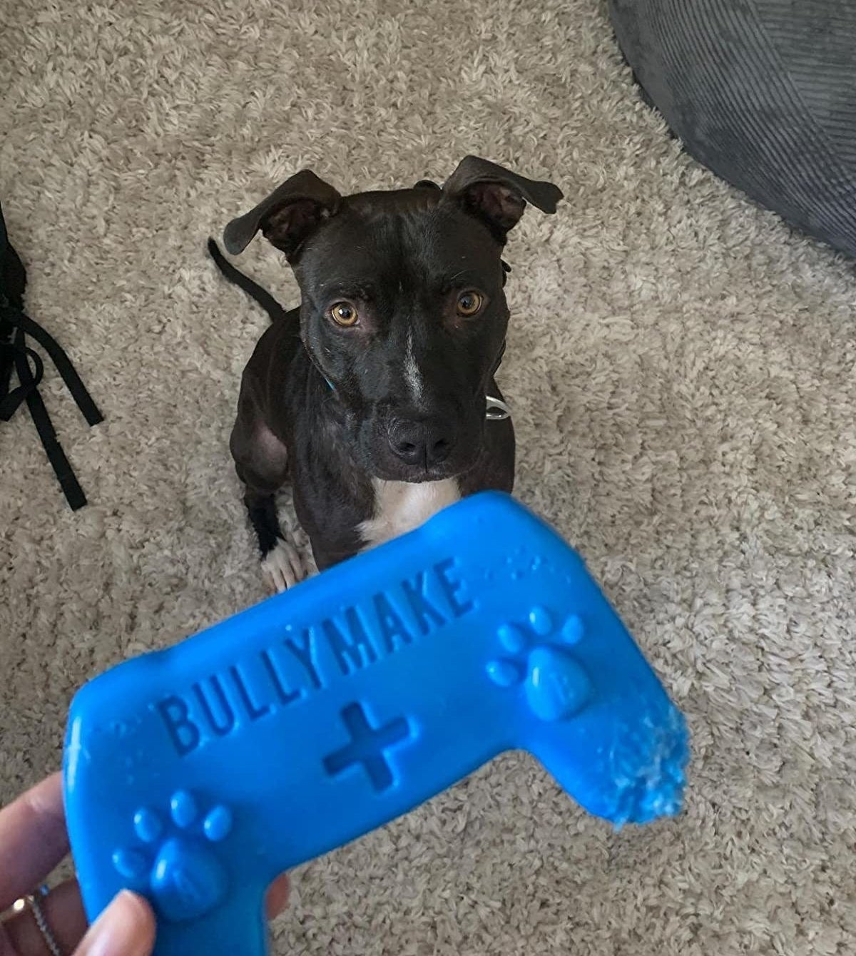 The toy, which looks like a video game controller and is bright blue
