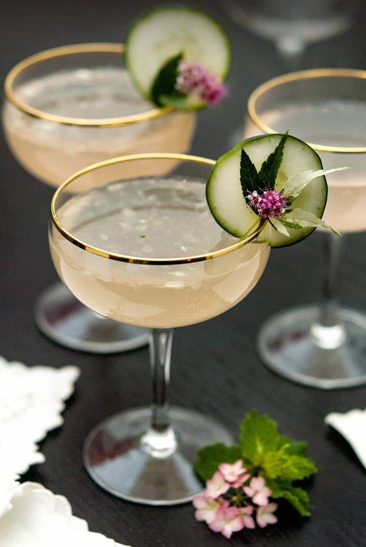 Pink grapefruit cocktails in coupes.