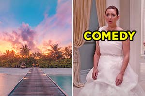 """On the left, a beach at sunset, and on the right, Maya Rudolph as Lillian in """"Bridesmaids"""" labeled """"comedy"""""""