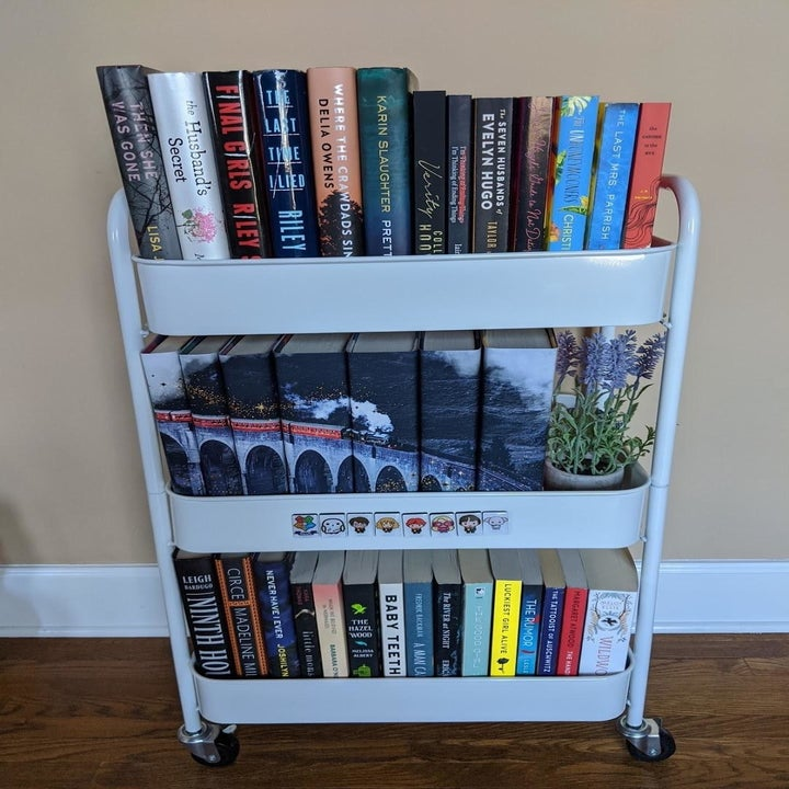 the cart holding books