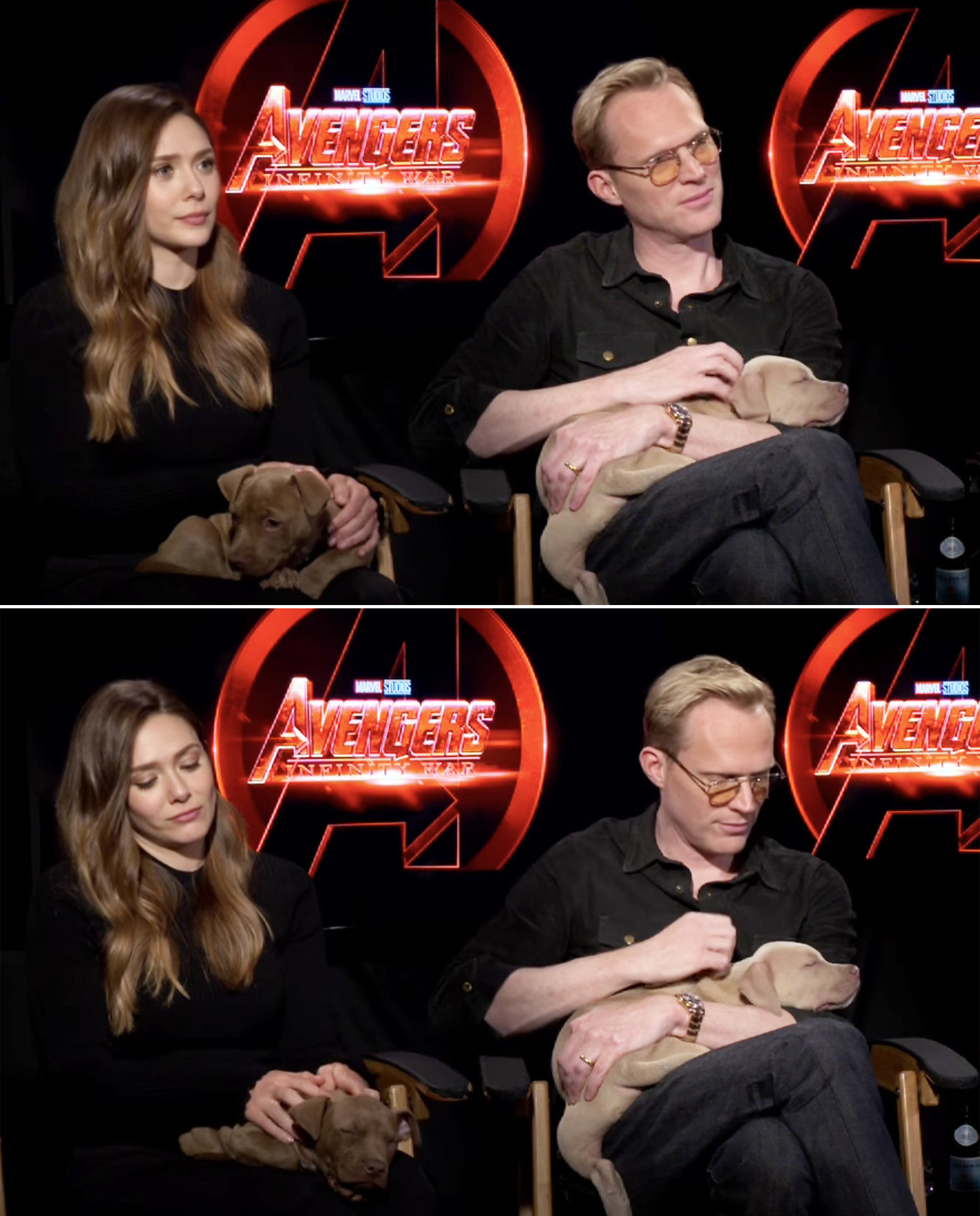 Lizzie and Paul petting two dogs
