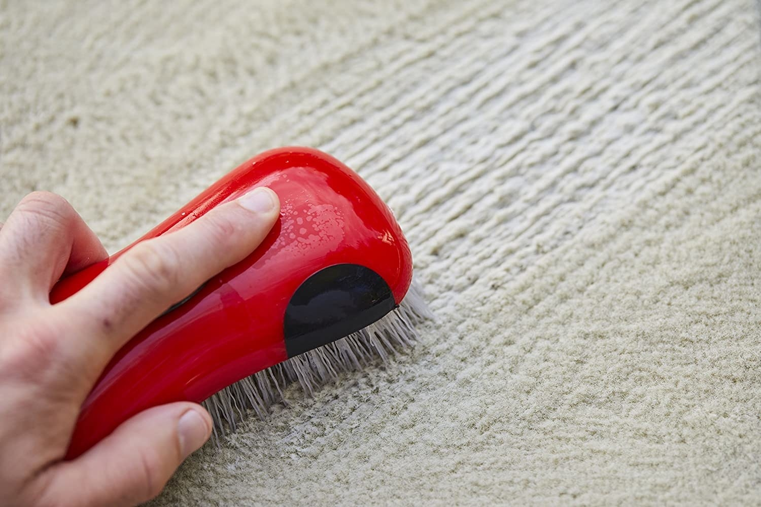 person brushing a carpet with the brush