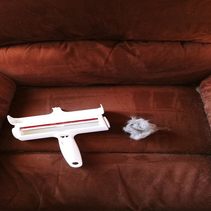 The clean couch and Chom Chom roller