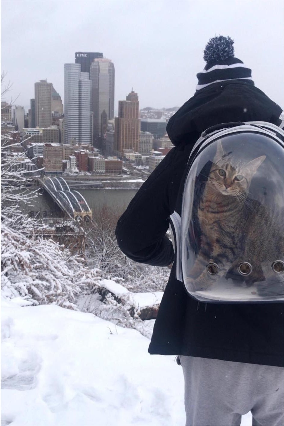 A person in the snow wearing the cat backpack