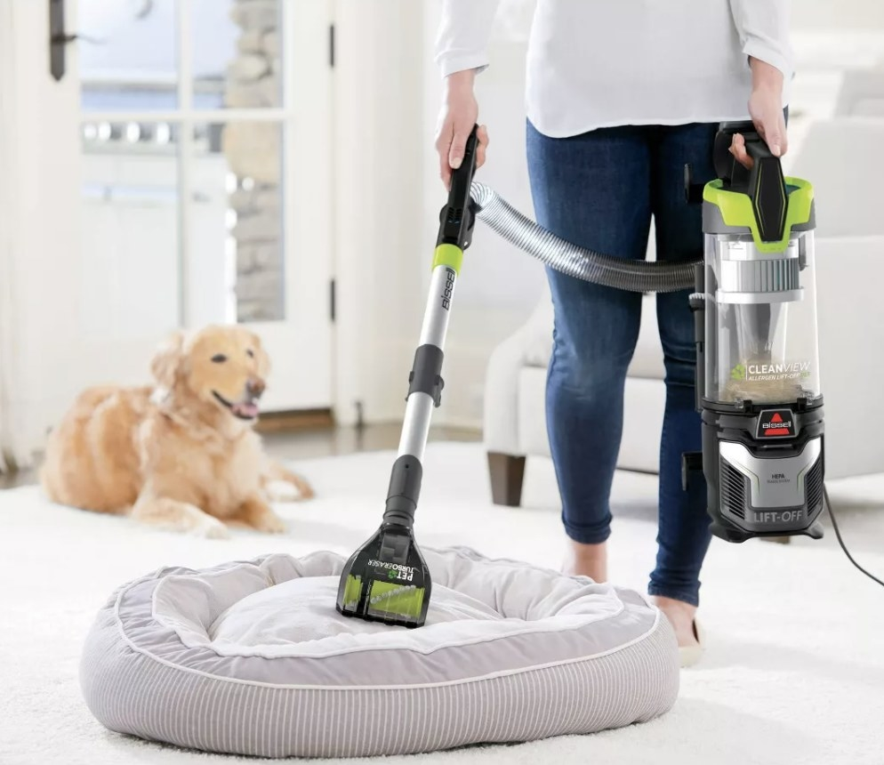 A person vacuuming a pet bed