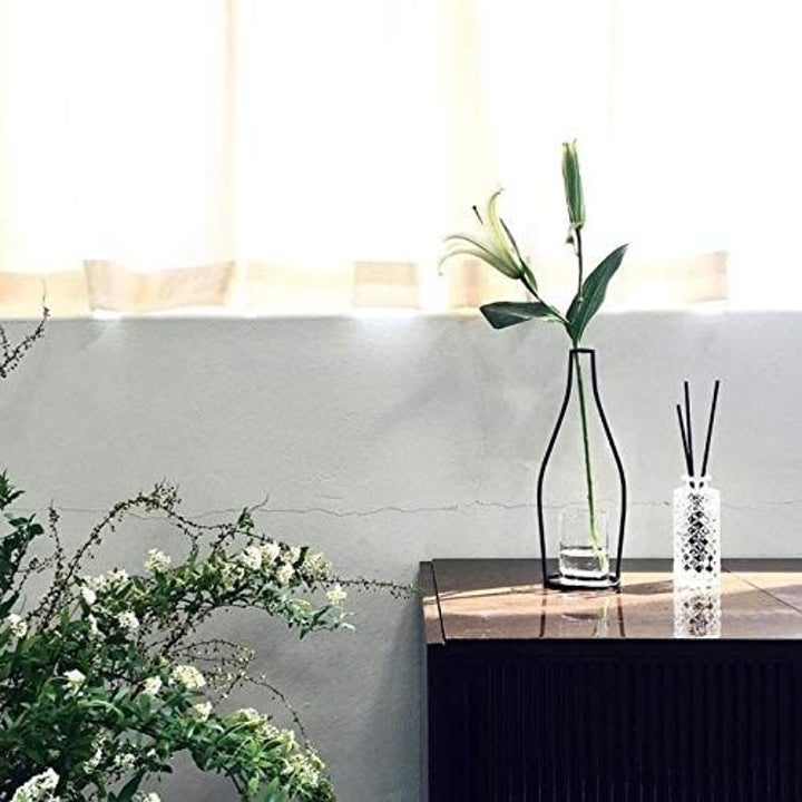 A single vase with one stem inside