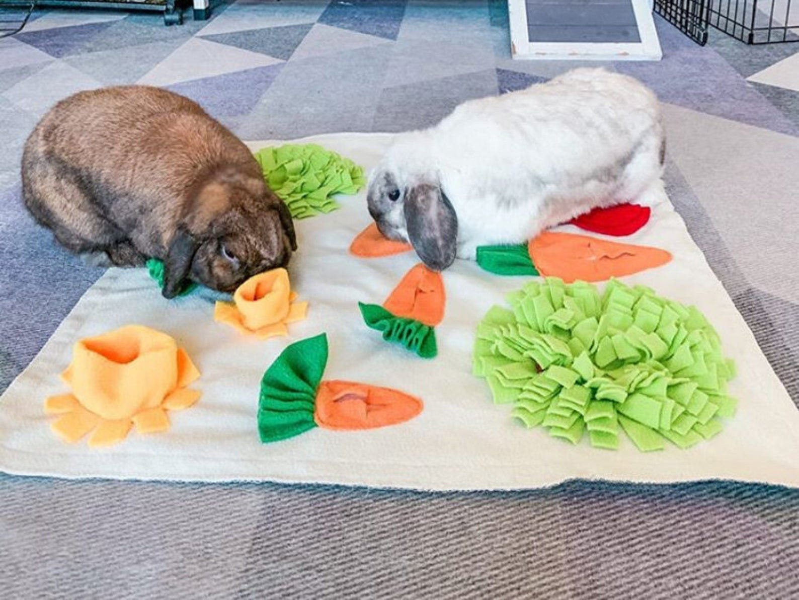 the mat with two big rabbits feeding