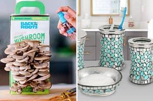 on left, mushroom grow kit. on right, mermaid-inspired bathroom set with shimmery toothbrush holder