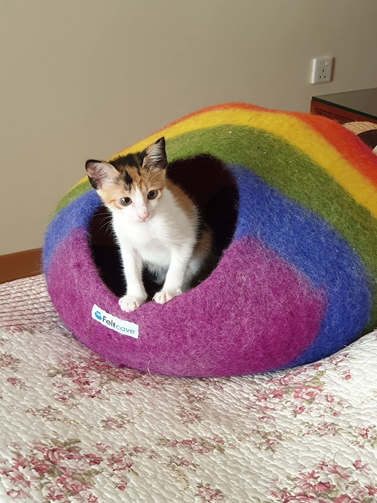 The cave bed, in rainbow