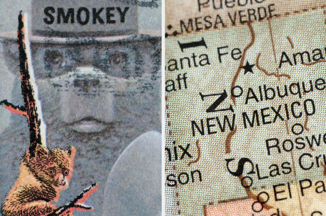 Smokey bear and New Mexico map