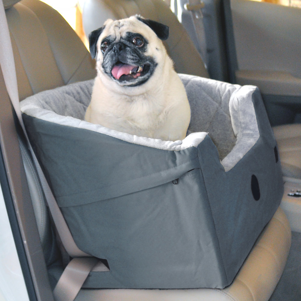 pug sitting in a car seat booster in the back seat of a car