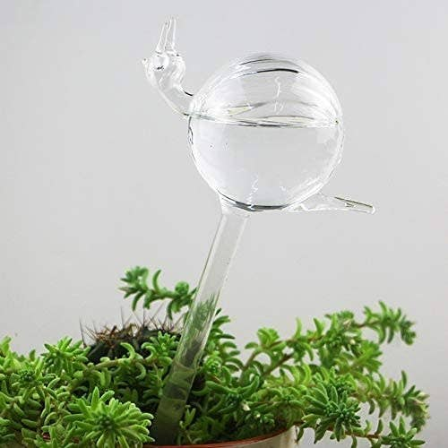 A snail-shaped plant watering bulb