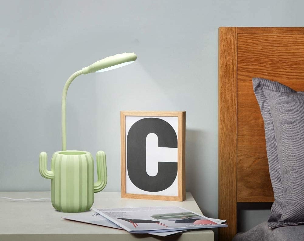 The flexible lamp with a cactus cup at its base