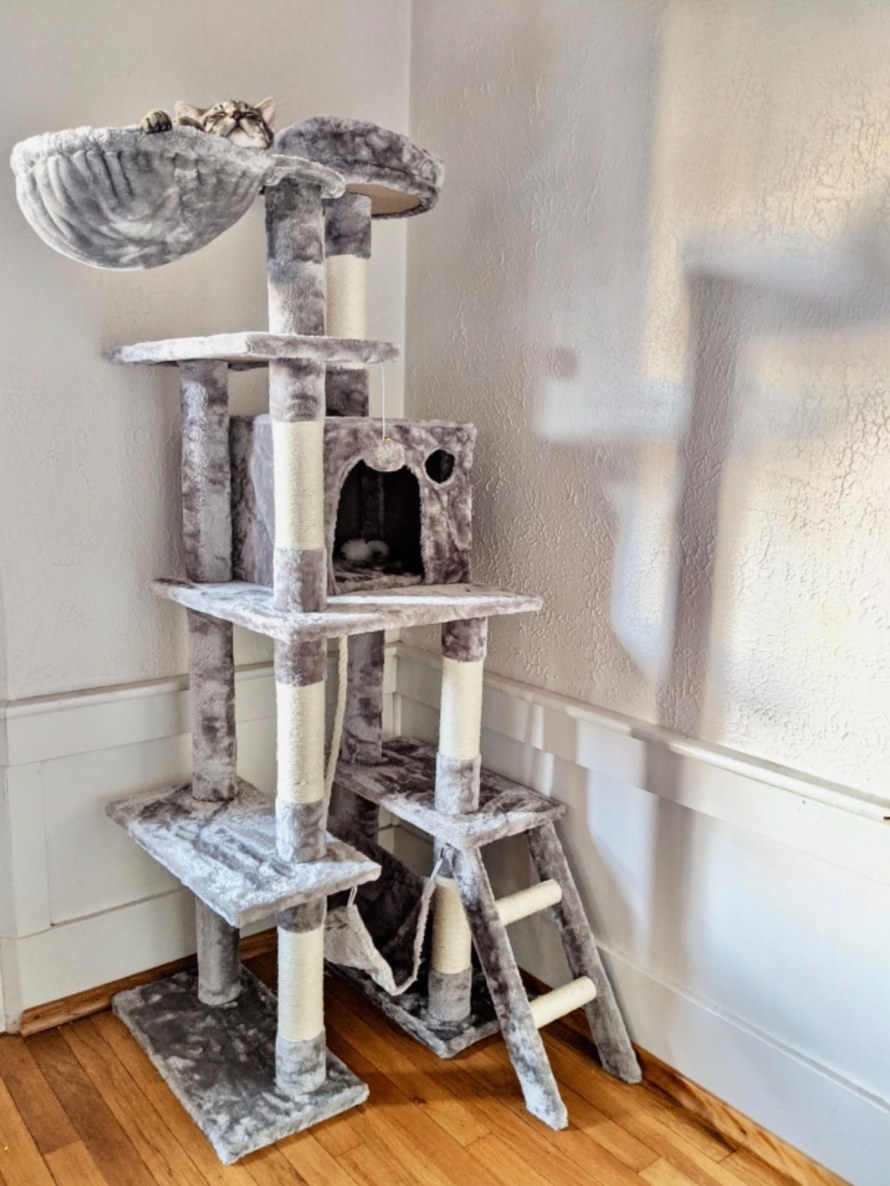The tall, multi-level cat tower in light gray with a cat sitting in the cup at the top