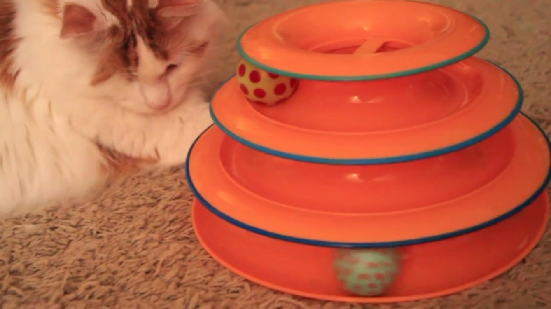 The three-tier cat toy