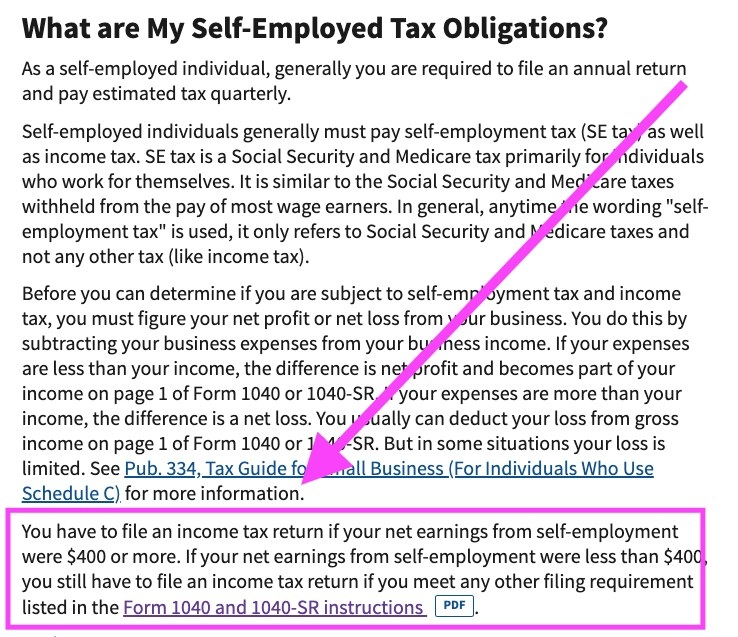 Screenshot of self-employed information from the IRS