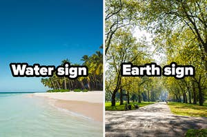 """Beach with the words """"water sign"""" and park with the words """"earth sign"""""""