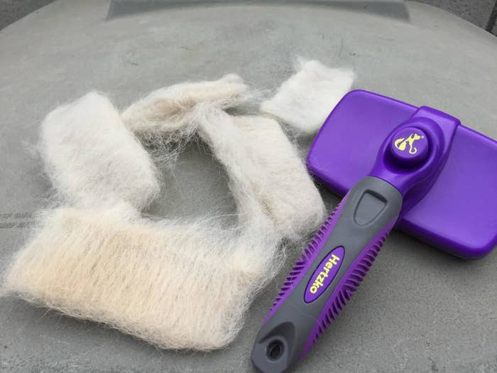 Several clumps of white fur and the purple brush