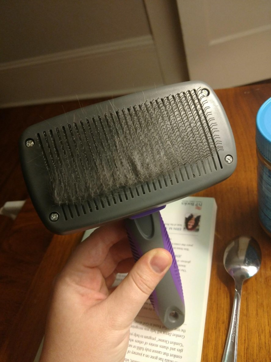 The reviewer's image of the grooming brush in black and purple