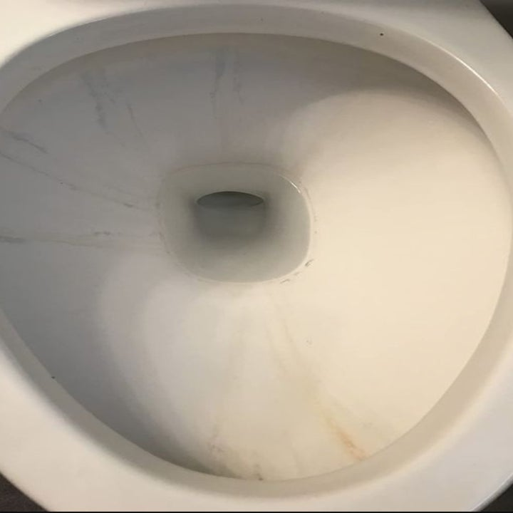 A before picture of the toilet with stains and grime