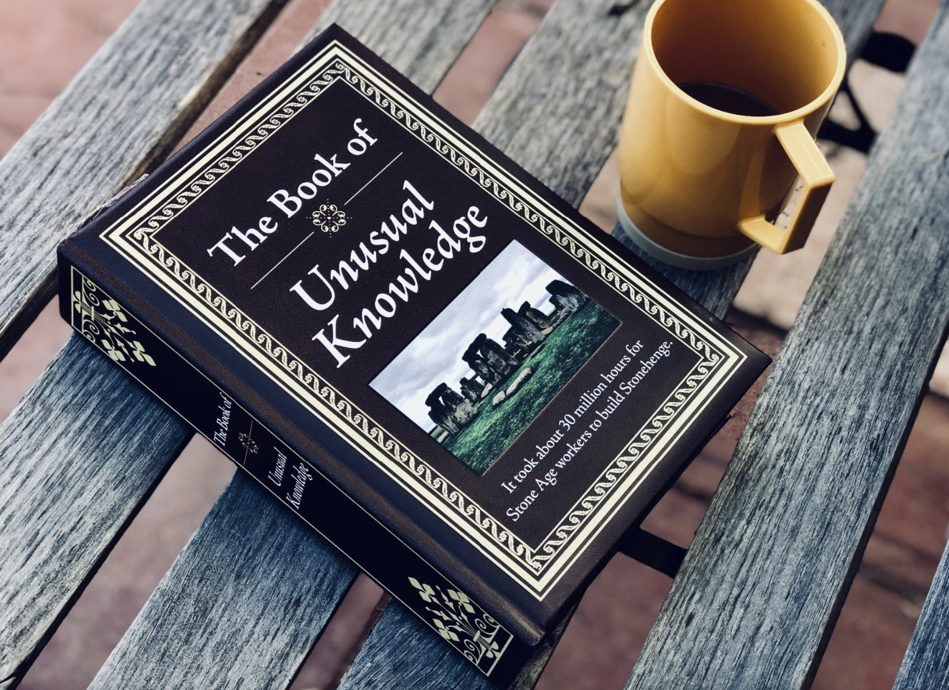 a reviewer photo of the cover of the book