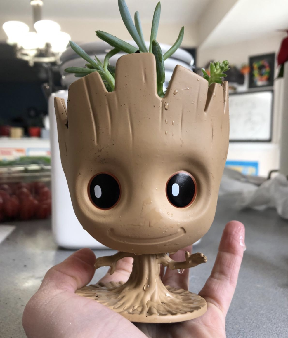 reviewer holding the groot planter in their hand