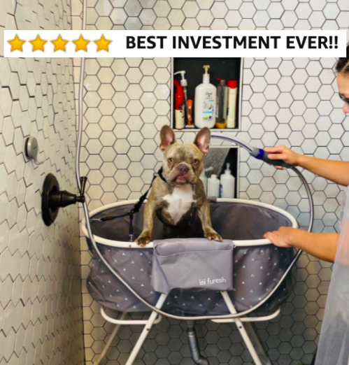"""Reviewer washing their bulldog in the shower with the wash station with five star caption """"best investment ever"""""""