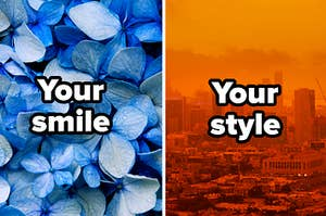 """Blue flowers with """"your smile"""" and orange skyline with words """"your style"""""""