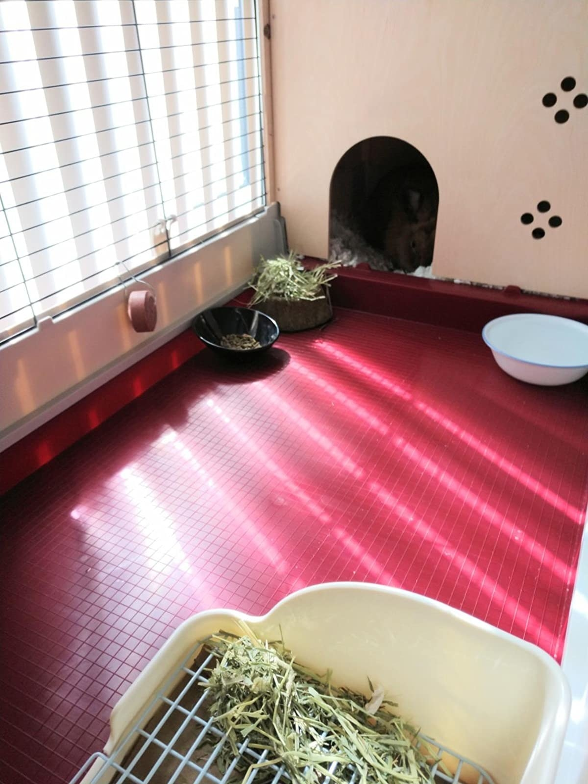A very clean rabbit enclosure