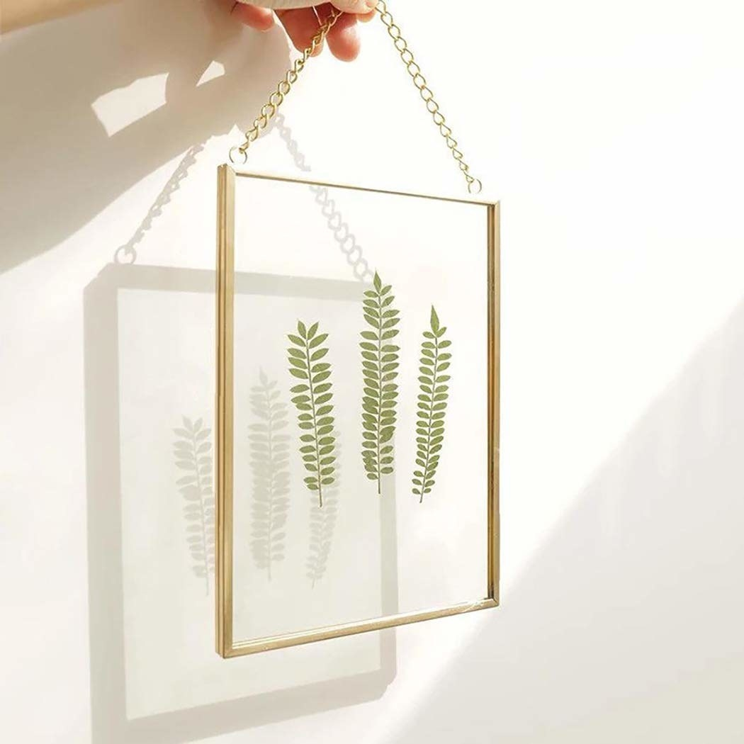 The frame with a three dried sprigs of a plant