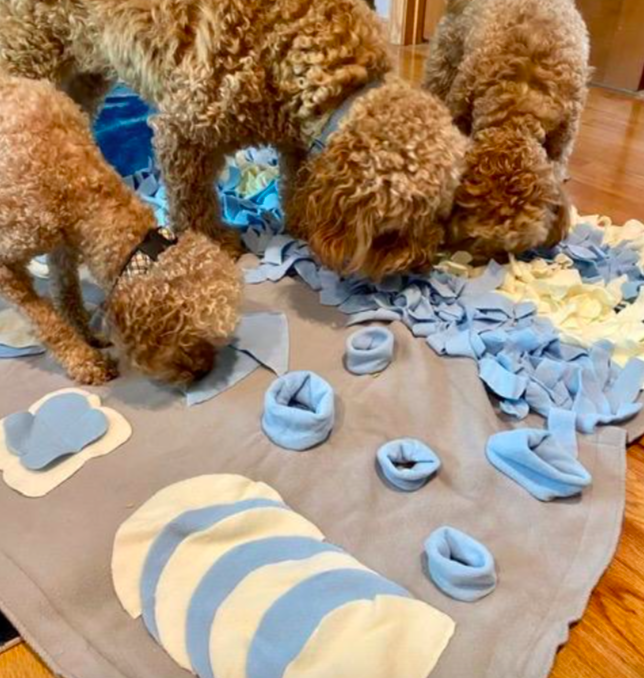 Reviewer's three dogs sniffing the textured mat for treats