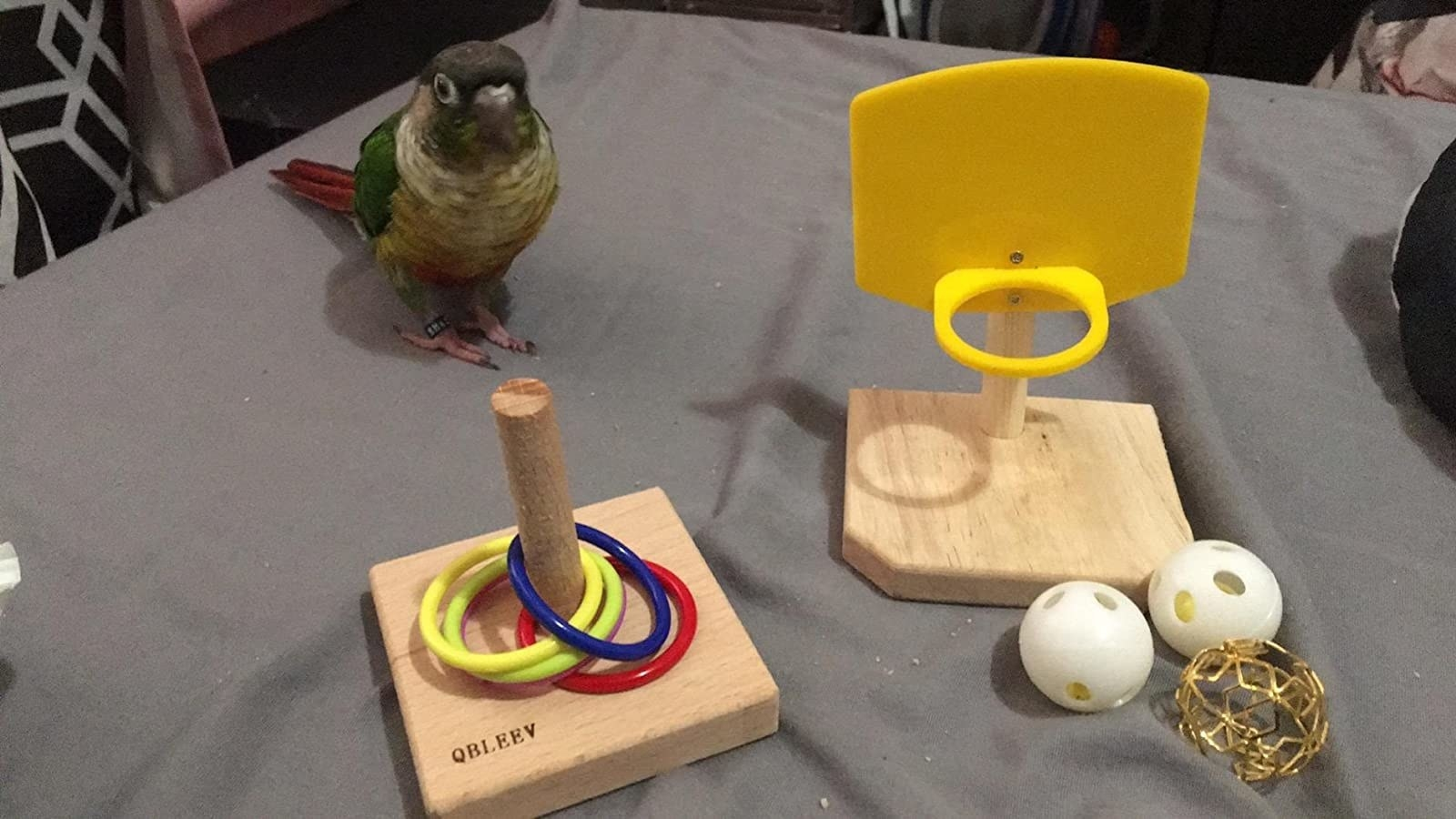 Reviewers bird with toys