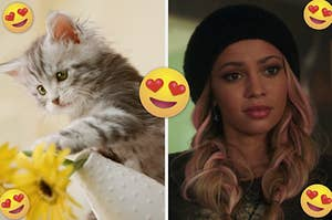 "A kitten knocks over a vase of sunflowers and Vanessa Morgan as Toni Topaz in the show ""Riverdale."""