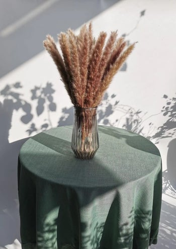 a reviewer's brown bouquet of pampas grass in a vase