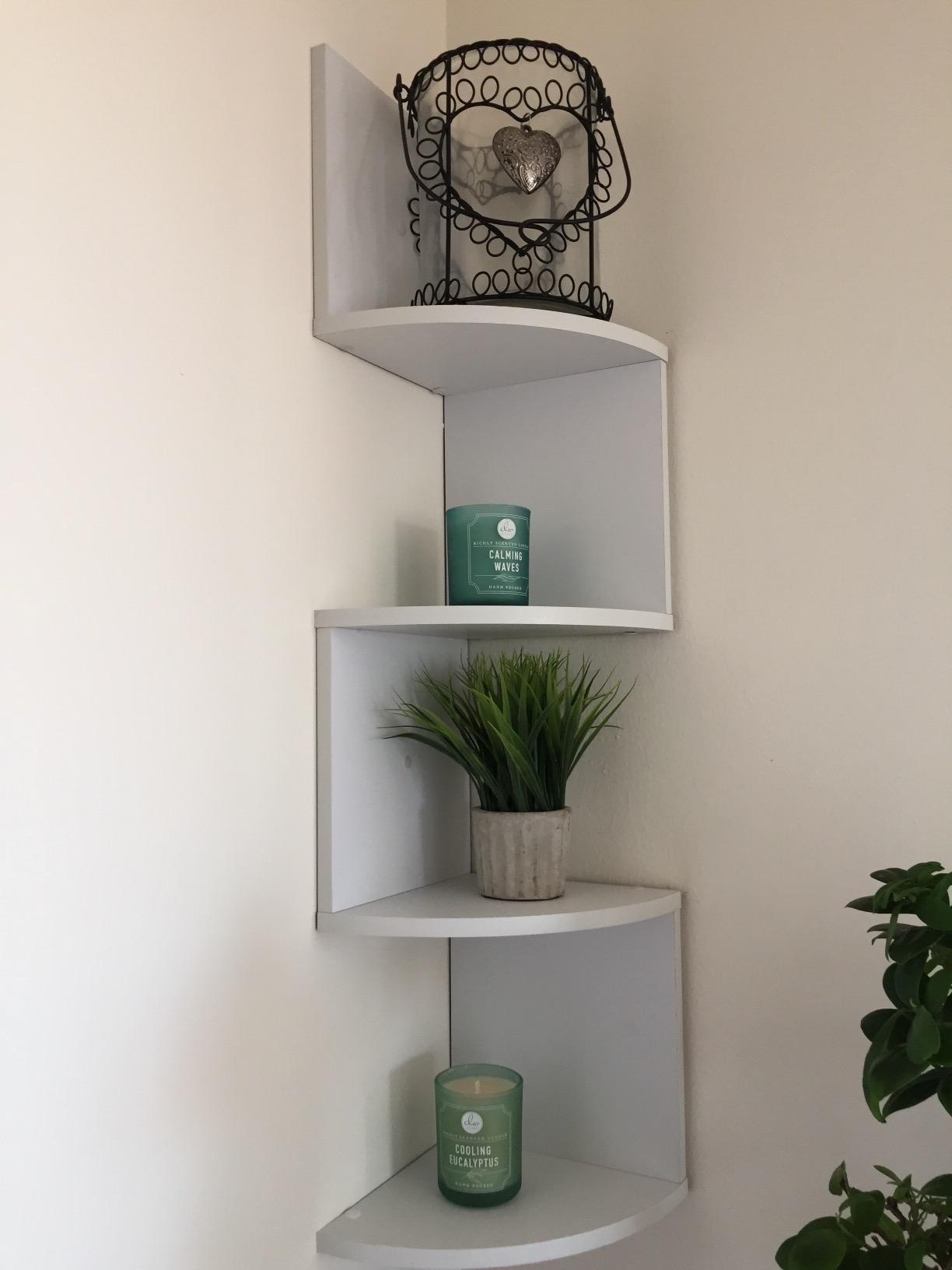The shelves, which zig-zag, with each shelf having only one wall