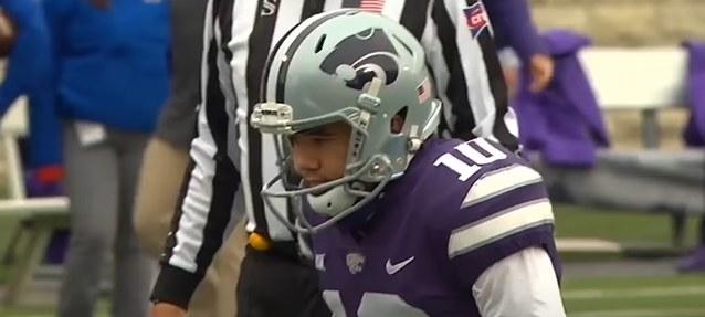 Silver helmet with a purple cartoon wildcat head